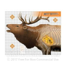 Animal XRAY Elk Practice Target - Precision Hunting Sight-In - Champion - 6 Count