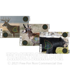 """Champion VisiColor - 12 Real Life Reactive Paper Targets - 18"""" x 12"""" Targets"""