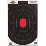 Birchwood Casey Splatter Targets - 8 Dirty Bird Targets - B-24 Silhouette